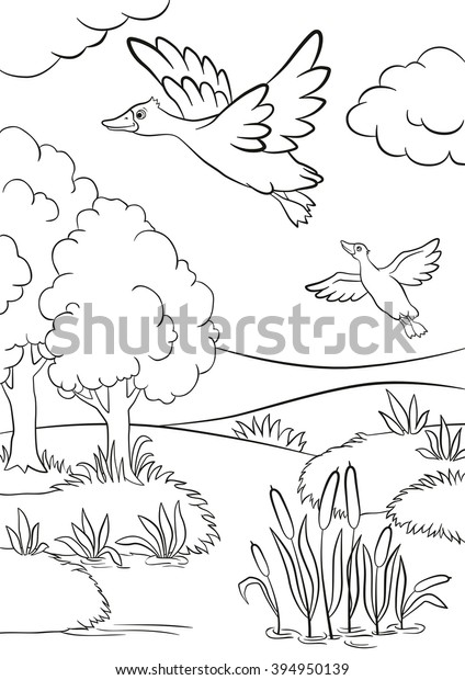 Coloring Pages Two Ducks Fly Under Stock Vector Royalty Free 394950139