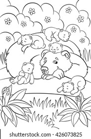 Coloring Pages Wild Animals Kind Bear Looks At Little Cute Baby Bears And Smiles