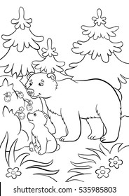 Coloring pages. Wild animals. Kind bear and little cute baby bear looks at raspberry.