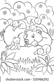 Coloring pages. Wild animals. Kind bear looks at little cute baby bears and smiles.