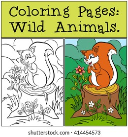 Coloring Pages Wild Animals Little Cute Squirrel Stands On The Stump And Looks At