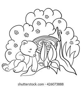 Coloring Pages Wild Animals Little Cute Baby Bear Sleeps In The Forest
