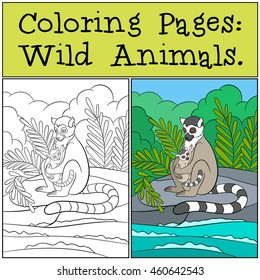 Coloring Pages Wild Animals Mother Lemur Sits On The Stone Near Sea With