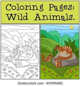 Coloring Pages: Wild Animals. Mother numbat with her little cute babies.
