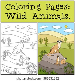 Coloring Pages: Wild Animals. Mother meerkat with her little cute babies on the stone.