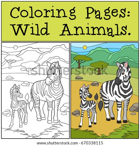 Coloring Pages Wild Animals Mother Zebra With Her Little Cute Baby