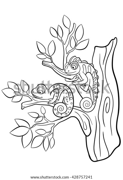 Top 25 Free Printable Wild Animals Coloring Pages Online | 620x424
