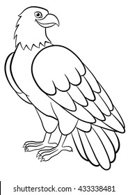 620 Top Eagle Coloring Pages For Adults For Free
