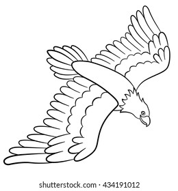Coloring pages. Wild birds. Cute eagle flies and smiles.