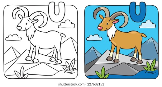 Colouring Picture Images, Stock Photos & Vectors | Shutterstock