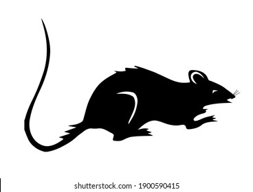 coloring rat with black color