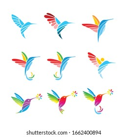 Colourful colibri or hummingbird with 9 different shape