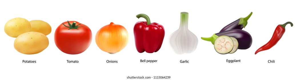 Colourful collection of vegetables on a white background in realistic style. Tomato, garlic, Bell pepper, potatoes, onions, eggplant, peppers. Sign, symbol, icon, logo. Vector eps10.