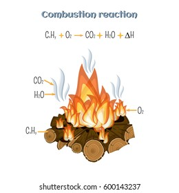 Combustion reaction - wood burning at fire camp. Types of chemical reactions, part 5 of 7. Educational chemistry for kids. Cartoon vector illustration in flat style.