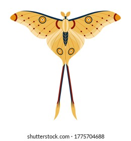 Comet Moth or Madagascan Moon Butterfly. Tropical rainforest Argema mittrei in yellow color. Colorful exotic moth with antennae and tale, flying insect in flat design.