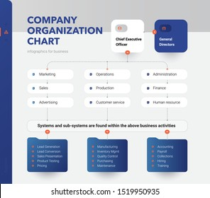 Company Organization Chart. Structure of the company. Business hierarchy organogram chart infographics. Corporate organizational structure graphic elements.