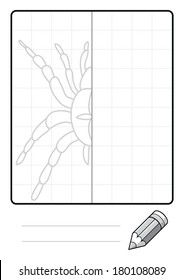 Complete the Symmetrical Drawing: Spider (one page drawing task)