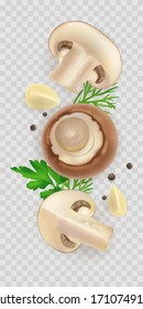 Composition of 3d realistic champignons isolated on transparent background. Mushroom composition flat lay with parsley dill for food label design. Vector cremini garlic and pepper illustration. Whole