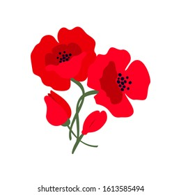Composition with bright red poppy flowers isolated on white background. Symbol of International Day of Remembrance.  Anzac day symbol.   Vector illustration.