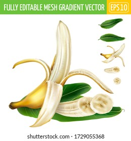 Composition of half-peeled banana and sliced banana with green leaves.