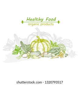The composition of natural vegetables. Graphic vector hand drawing.