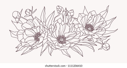 Composition of pink peony flowers. Contour drawing. Vector illustration