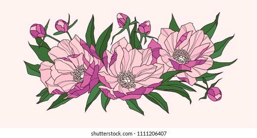 Composition of pink peony flowers. Vector illustration