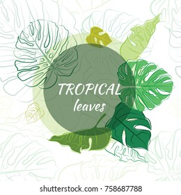 Composition of tropical leaves in a circle.