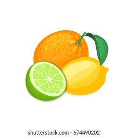 Composition of tropical orange, lemon and lime fruits. Group of ripe vector citrus fruits whole and slice for design of food packaging breakfast, detox, cosmetics cream, jam, juice