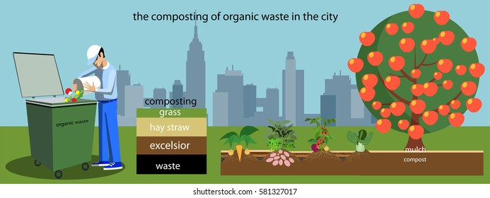 the composting of organic waste in the city..Vector illustration in flat design