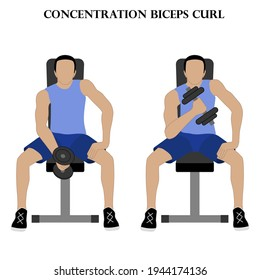 Concentration biceps curl exercise vector illustration on the white background.