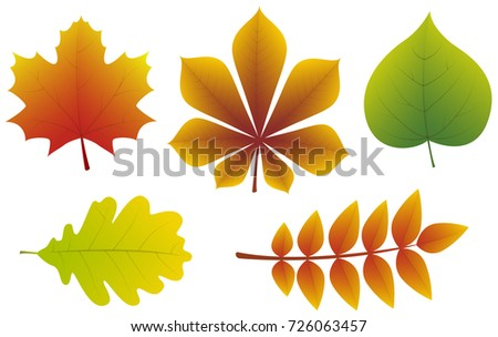 Concept 3 D Autumnal Leaves Isolated On Stock Vector (Royalty Free