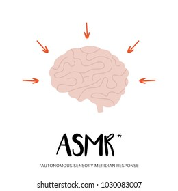 Concept of ASMR effect on human's mind, brain tingling sensations.