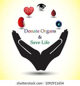 Concept of donating organs to a living recipient, concept of spreading awareness about Organ Donation. Concept of a simple pledge to donate  Kidney, Heart, Eyes, Blood & Stem Cells.