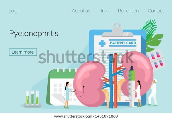 Concept Pyelonephritis Diseases Kidney Stones Cystitis Stock Vector Royalty Free 1451091860