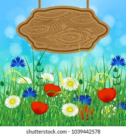 Concept Summer. Sky, blur, meadow with herbs and flowers. Wooden signboard for text