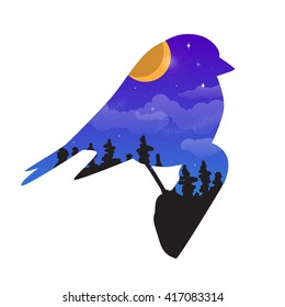 Concept vector illustration with double explosion - bird and night sky
