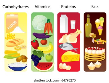 concept which divides all products in 4 group: those which contain mostly  carbohydrates, vitamins