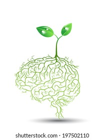 concept of Young plant with brain root, vector