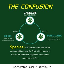 the confusion cannabis hamp and THC