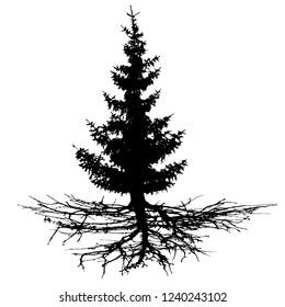 Conifer tree with roots, vector silhouette. Wood, Christmas tree, fir-tree, pine, pine-tree, Scotch fir, cedar