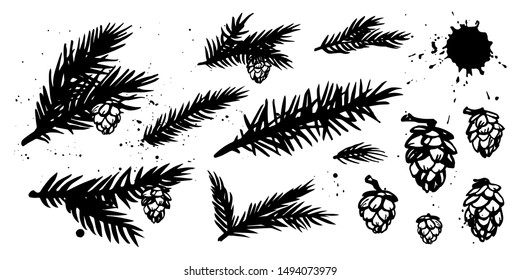Coniferous branches and cones hand drawn set. Pine, fir, spruce and larch. Black and white sketch elements for Christmas design