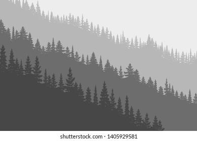 Coniferous forest in the fog, black and white landscape. Natural background, vector illustration