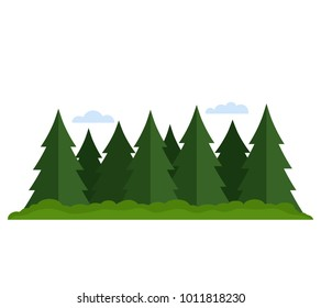 Coniferous forest mixed with deciduous forest. flat vector illustration isolated on white background