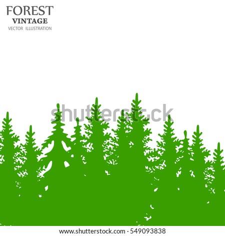 coniferous forest silhouette template landscape vector stock vector