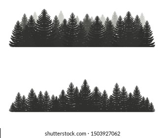 Coniferous pine forest. Silhouettes evergreen coniferous trees,  christmas tree, spruce. Camping