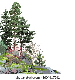 Coniferous trees among the rocks, covered with the green moss. Vector corner illustration isolated on white background