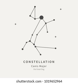 The Constellation Of Canis Major. The Great Dog - linear icon. Vector illustration of the concept of astronomy