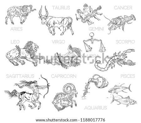 Constellations Zodiac Signs Horoscope Aries Taurus Image Vectorielle