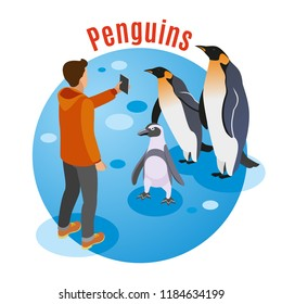 Contact zoo isometric background with penguin family and human character making photo of them on smartphone vector illustration